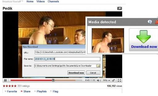 videote allalaadimine veebisaitidelt