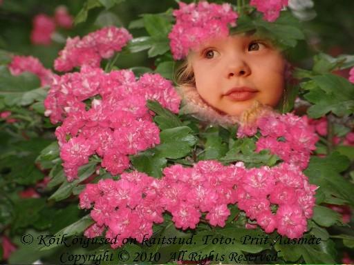 emadepäeva lilled ja lapse rõõm