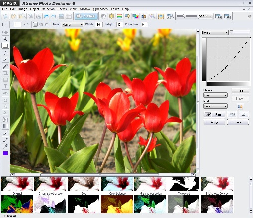 edit photos quickly and precisely
