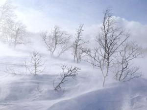 lumi ja hanged