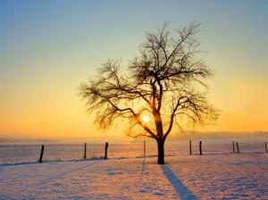loojuv päike