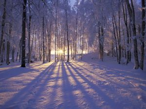 päike tõuseb