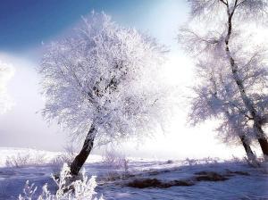talvine aeg