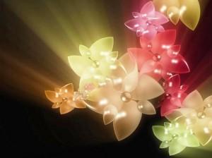 Lilled valentinipäevaks