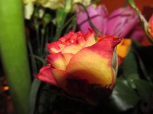 lilled armastusest