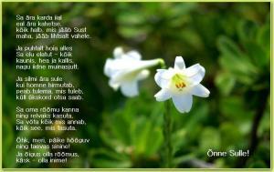 Luuletus sünnipäevaks