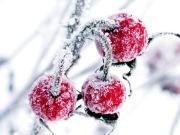 Jõulud on imede aeg
