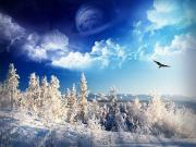 Sinine taevas ja härmas puud