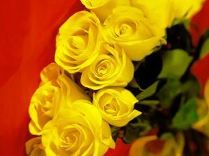 Roosid ja armastus