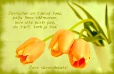 Salmid ja luuletused sünnipäevaks