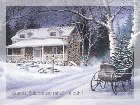 kaunist-jouluootust