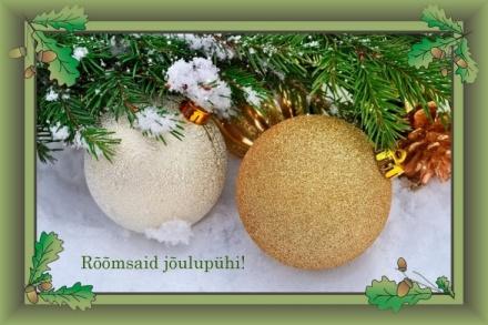 Rõõmsaid jõule