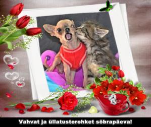 Humoorikas valentinipäeva kaart